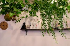 Tif et Tif et Colégram - Sandra Le Quéré - Coiffeuse - Salon de Coiffure - Salon d'esthétique - Produits végétaux - Bio - Paris - Paris centre - Bien-être - Coiffure - Coiffeur - 20 ans d'expérience - Végétal - Ambiance Plante - Ambiance Végétal